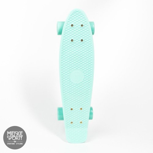 Fishboard Fish Skateboards Summer Green  / Silver / Summer Green